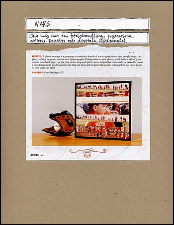 Amlt_blog_organizing2009_3