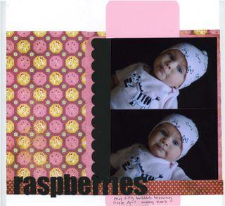 Shelbyvaladez-augbg-raspberries